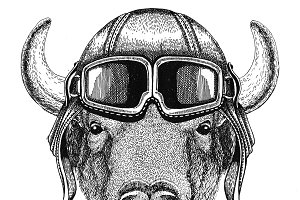 Buffalo, bison,ox, bull Aviator, biker, motorcycle Hand drawn illustration for tattoo, emblem, badge, logo, patch