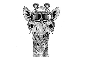 Camelopard, giraffe Aviator, biker, motorcycle Hand drawn illustration for tattoo, emblem, badge, logo, patch