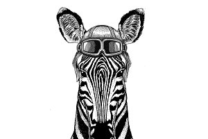 Zebra Horse Aviator, biker, motorcycle Hand drawn illustration for tattoo, emblem, badge, logo, patch