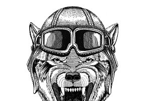 Wolf Dog Wild animal Aviator, biker, motorcycle Hand drawn illustration for tattoo, emblem, badge, logo, patch