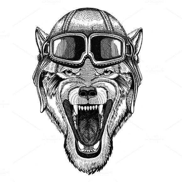Wolf Dog Wild animal Aviator, biker, motorcycle Hand drawn illustration for tattoo, emblem, badge, logo, patch