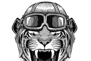 Wild tiger Aviator, biker, motorcycle Hand drawn illustration for tattoo, emblem, badge, logo, patch