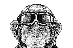 Chimpanzee Monkey Aviator, biker, motorcycle Hand drawn illustration for tattoo, emblem, badge, logo, patch
