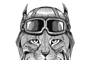 Wild cat Lynx Bobcat Trot wearing leather helmet Aviator, biker, motorcycle Hand drawn illustration for tattoo, emblem, badge, logo, patch