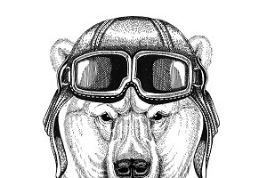 Polar bear wearing leather helmet Aviator, biker, motorcycle Hand drawn illustration for tattoo, emblem, badge, logo, patch