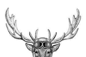Deer wearing leather helmet Aviator, biker, motorcycle Hand drawn illustration for tattoo, emblem, badge, logo, patch