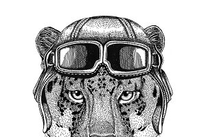 Wild cat Leopard Cat-o'-mountain Panther wearing leather helmet Aviator, biker, motorcycle Hand drawn illustration for tattoo, emblem, badge, logo, patch