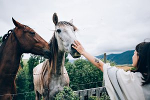 Woman plays with two horses