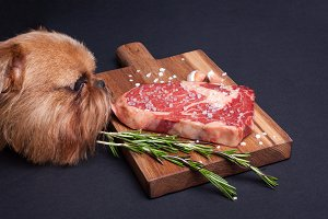 The red hungry dog tries to steal a piece of marble meat from the table. Steak ribeye with spices on a wooden board