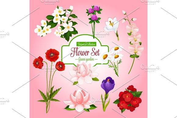 Vector Poster Of Spring Garden Flowers Set