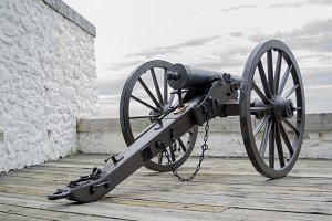 Cannon in View
