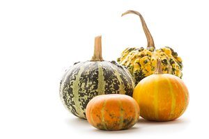 decorative pumpkin isolated
