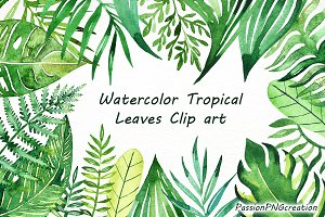 Watercolor Tropical Leaves Clip art