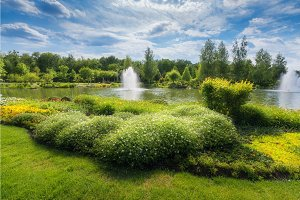 Scenic view of the park in summer in Mezhyhirya, Ukraine