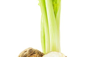 green celery isolated