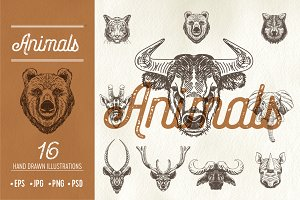 16 hand drawn animal heads