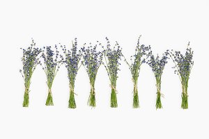 Bouquets of lavender