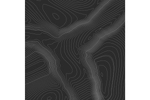 Topographic map background concept with space for your copy. Topography lines art contour , mountain hiking trail , Shape design. Computer generated  .