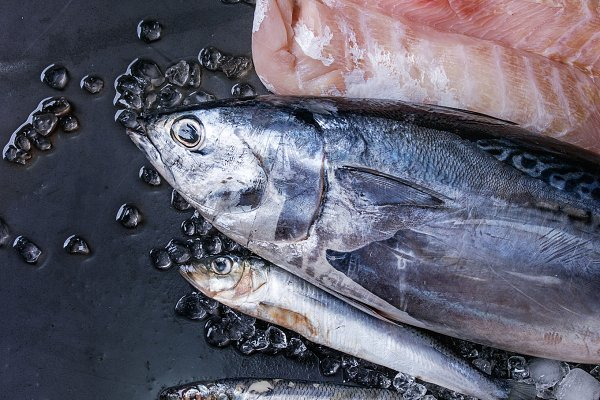 Vatiery of raw fresh fish