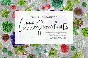 Little Succulent Watercolor Graphics