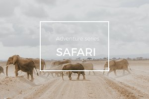 Adventure Series: Safari LR Preset