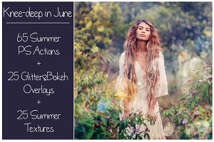 Summer Collection - PS Bundle