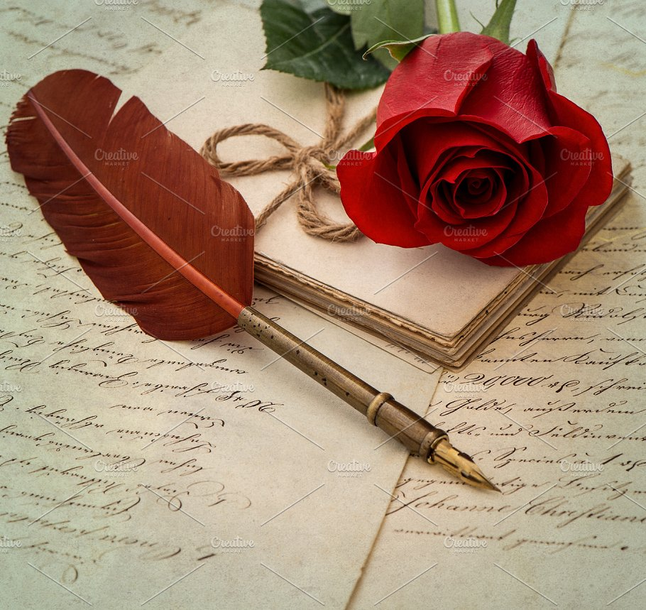 love letter and rose flower holidays