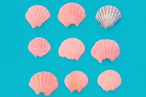 Broken seashells Pink minimal art