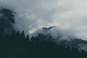 Foggy Forest and Mountains Film Look