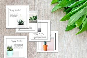 Social Media Advert Pack- Succulents