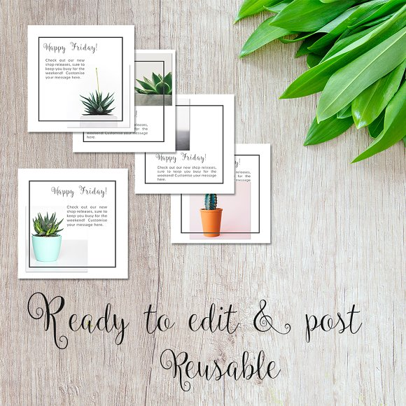 Social Media Advert Pack- Succulents