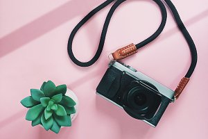 Creative flat lay camera and plant