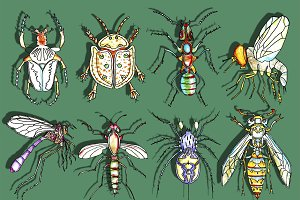 Bugs Watercolor Clipart, Insects
