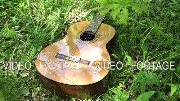 Acoustic Guitar In The Woods