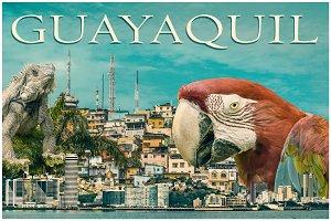 Guayaquil Touristic Postal Design