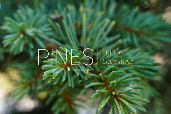 Pines Light Pines Light Italic