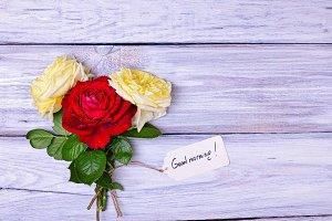 Three flowering roses