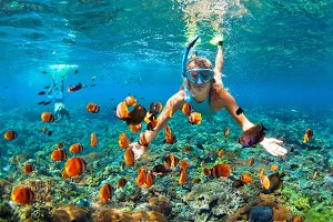 Snorkeling with reef fishes