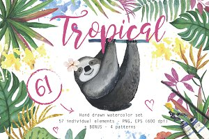61 Tropical watercolor set elements