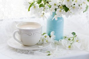 tea cup and blossom branch