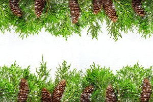 Christmas natural Border of coniferous branches and cones and dr