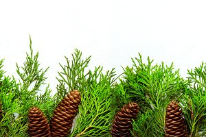 Christmas natural Border of coniferous branches and cones. Banne
