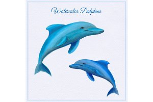 Watercolor dolphins card