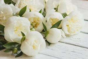 Bouquet of white peonies on the old white wooden boards