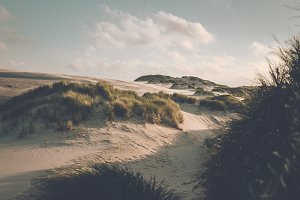A beautiful Dune Landscape at Sunset