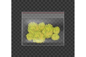 Realistic plastic bag of medicinal cannabis. Marijuana isolated on checkered background. Vector illustration.