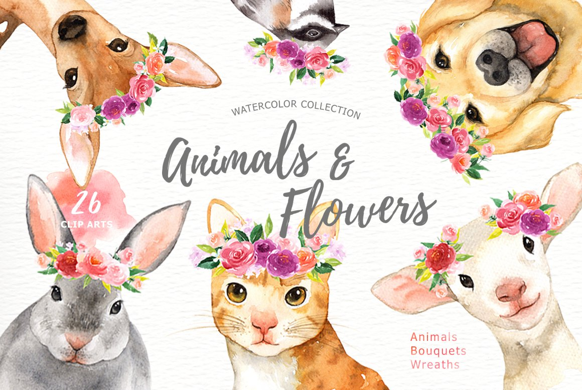 Animals & Flowers Watercolor Clipart ~ Illustrations ...