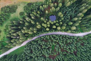 Aerial view of Pokljuka forest