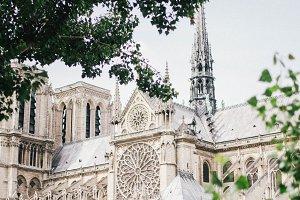 Notre Dame in Paris, I