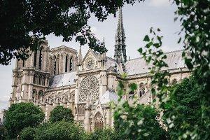 Notre Dame in Paris, II